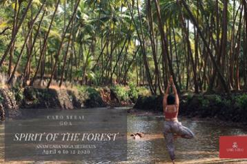 Easter Weekend Getaway - Spirit of the Forest