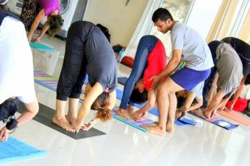 200 hour Yoga Teacher Training in Dharamsala