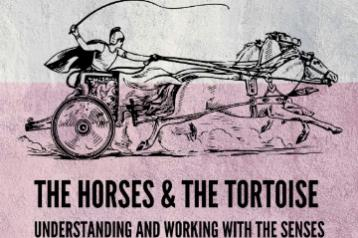 The Horses and the Tortoise - Understanding & Working with the Senses