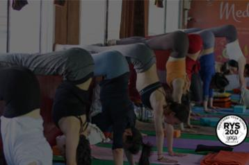200 Hour Hatha Yoga TTC - Tattva
