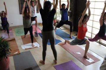 The Yoga Gallery